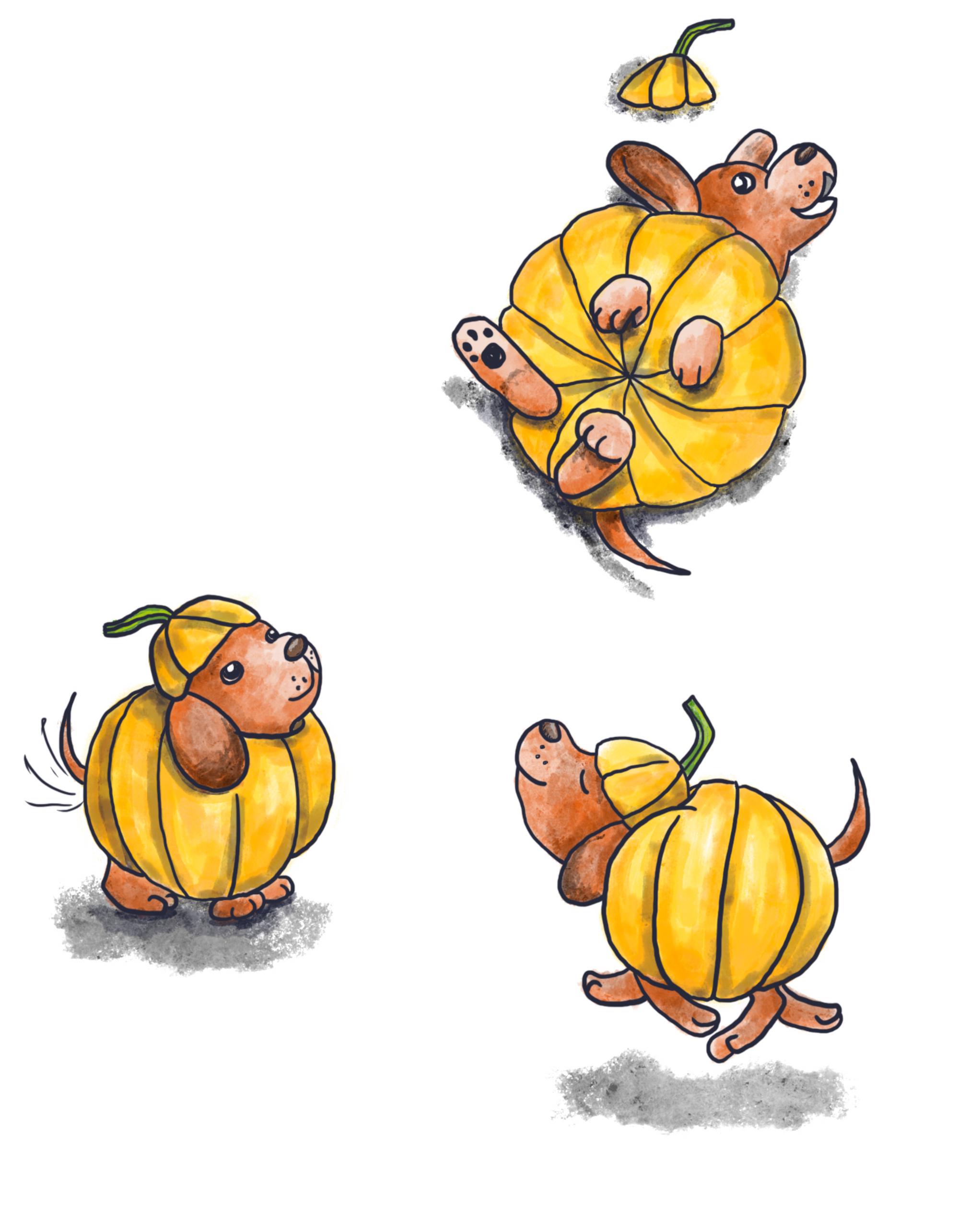 Pumpkin Pups
